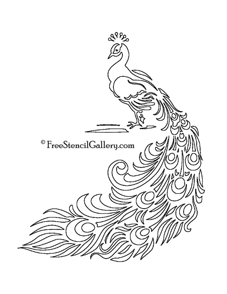 free printable peacock template | Free Stencil Gallery