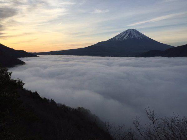富士山写真家@橋向 真 @hashimuki 4月8日 おはようございます 素晴らしい朝を迎えています✨ 今日も感動の光景に出会えました