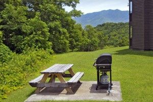 Bearadise - Truly phenomenal location! click here for more details! http://www.amazingviewscabinrentals.com/affordable-gatlinburg-cabins/