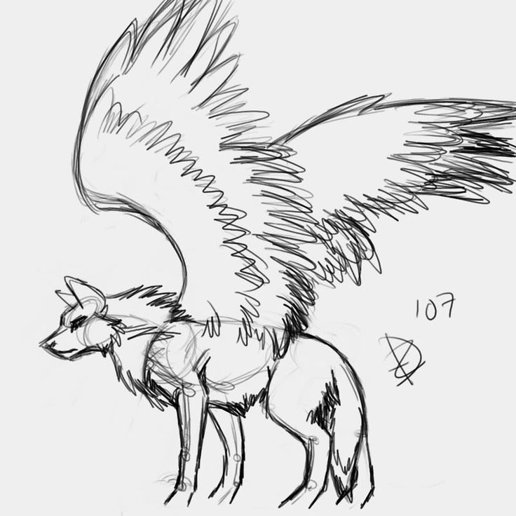 Wolf Drawing With Wings Wolves with wings drawings