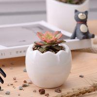 (Упаковка из 20 штук) яйца Дизайн Керамика сочные кашпо горшки мини Карликовые деревья кактус кашпо рабочего стола цветочные горшки для опто...