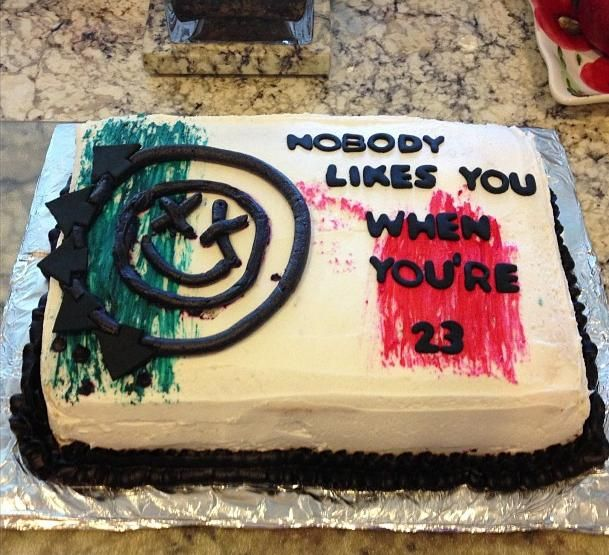 Nobody Likes You When You Re 23 Cake Blink 182 Yes
