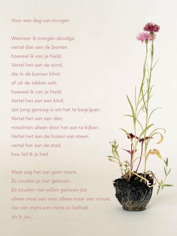 Aan de muur - Poëzieposters - poëzieposter met gedicht Voor een dag van morgen van Hans Andreus - Plint