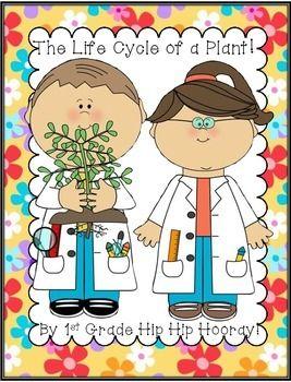 Plant...Life Cycle Freebie!