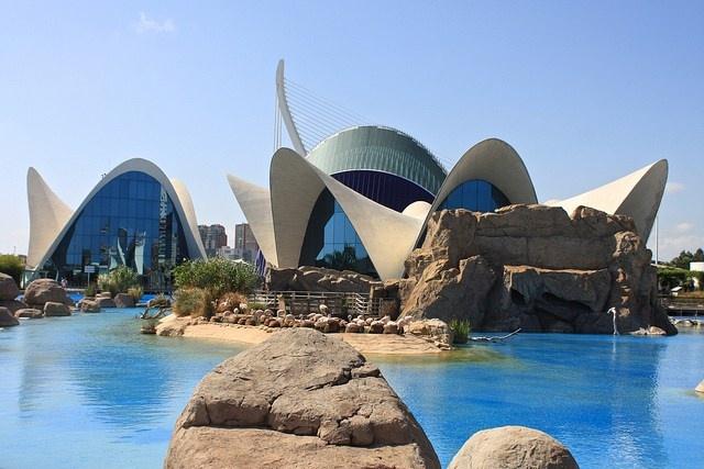 9 best ibiza the island images on pinterest balearic for Aquarium valencia bar
