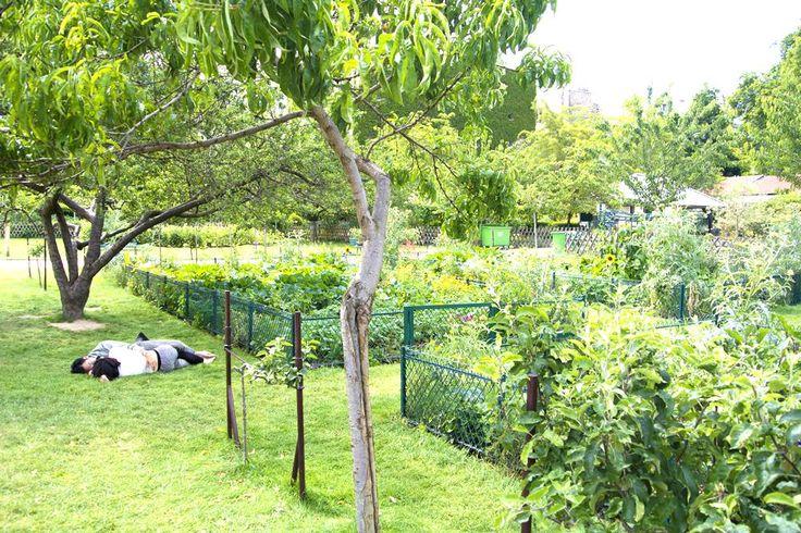 Les 201 meilleures images du tableau voir faire paris - L univers du jardin les rues des vignes ...