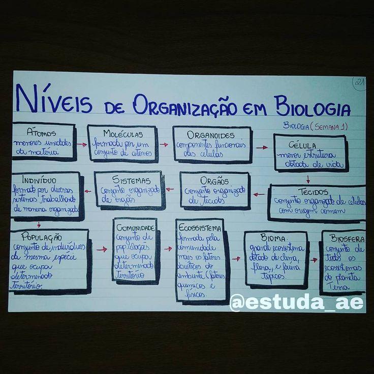 Bio - Níveis de Organização em Biologia
