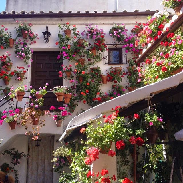 Spanish Adventures - Córdoba