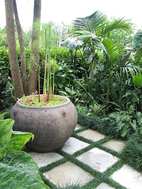 Balinese garden, feature pots, tropical gardens                                                                                                                                                                                 More