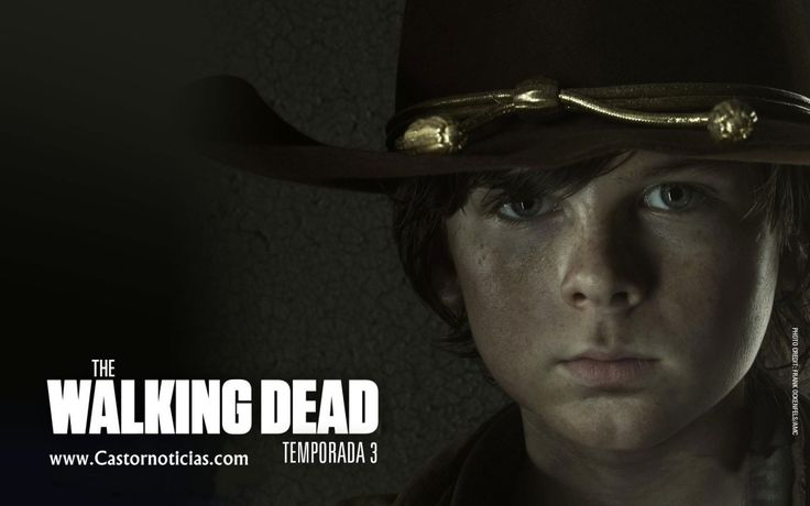 carl grimes walking dead sea 4   The Walking Dead 4 Temporada: O Que Acontece Apartir De Agora?