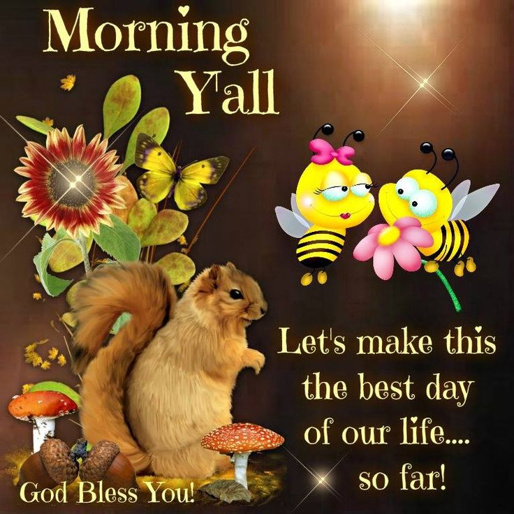 Morning Quote: 236 Best GOOD MORNING* FAMILY & FRIENDS Images On