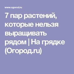 7 пар растений, которые нельзя выращивать рядом | На грядке (Огород.ru)