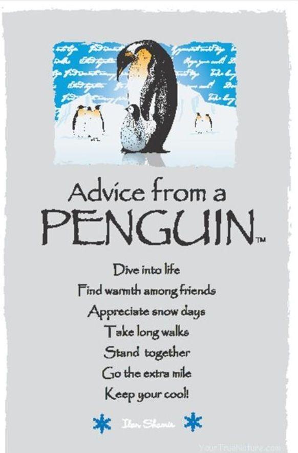 Penguin Medicine