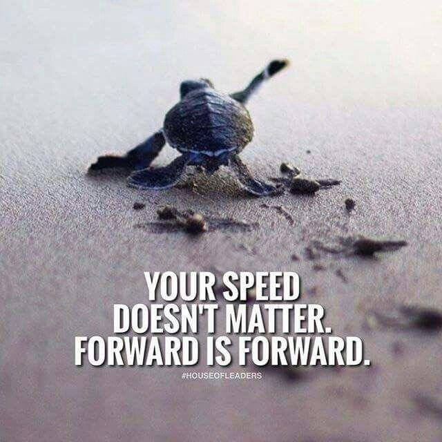 Any step forward is taking you to your goals so the pace does not matter