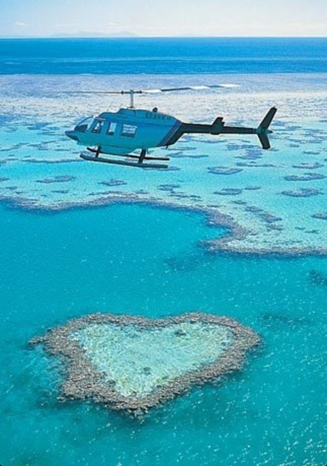 Holiday cannot come around sooner ! Can't wait to experience the Great Barrier Reef :)