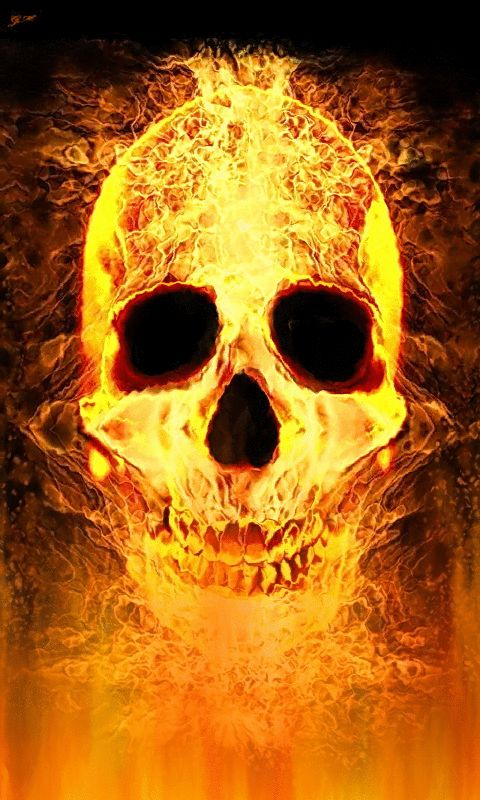 The Girl With The Dragon Tattoo Wallpaper Burning Flame Skull In 2019 Skull Live Wallpapers