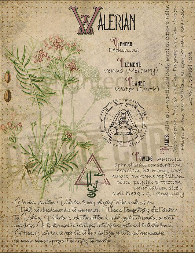 Valerian correspondences   let's get creative!   Book of