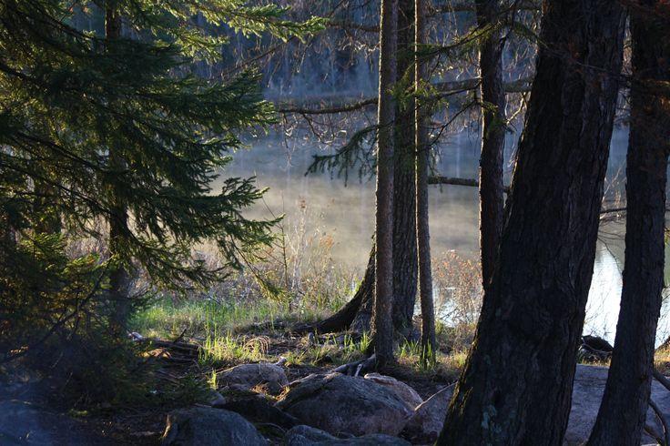 Angleworm Lake, Minnesota