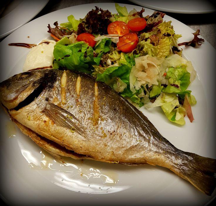 What do you fancy for lunch? You must try our grilled bream with mixed fennel salad. Welche Pläne haben Sie für das Mittagsessen? Wir laden Sie ein, eine gegrillte Dorade mit Fenchelsalat zu probieren.