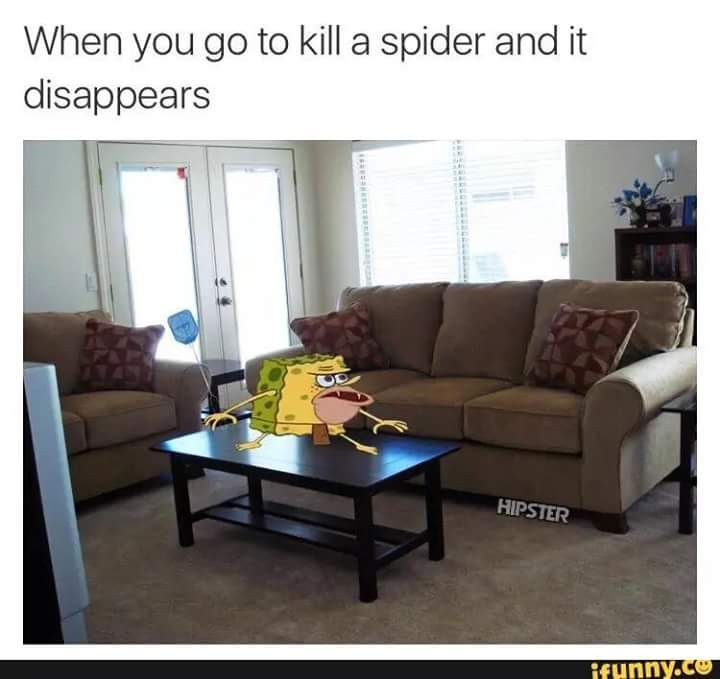 My boyfriend knows this is so true. Whenever there's a bug in general it's like I'm on a hunt.