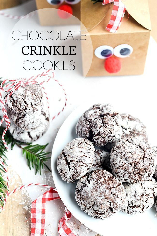 Chocolate Crinkle Cookies christmas christmas recipes christmas cookies christmas dessert christmas diy dessert best christmas recipes