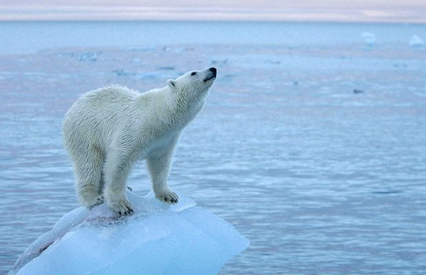 BASIC: On The Same Page For #ClimateChange