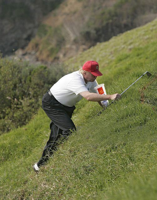 Image result for fat trump golf