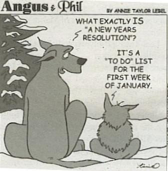 bonnes_resolutions