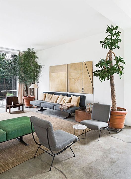 Lay out of a living room to get ideas from livingroom Large living room plants