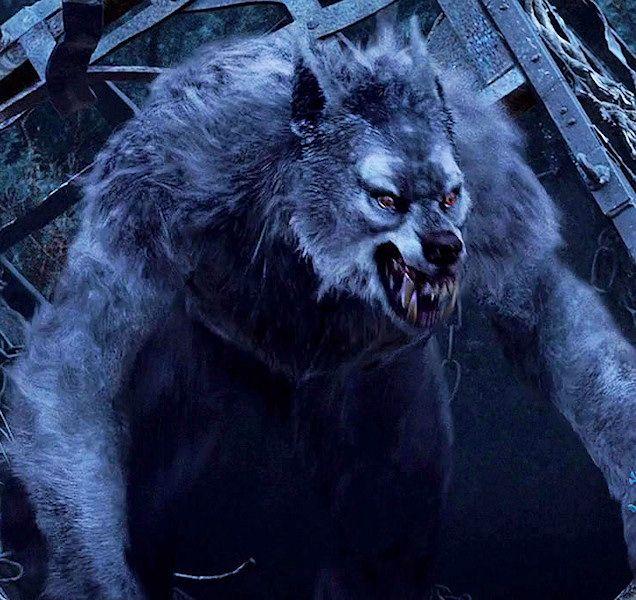Van Helsing Werewolves | van helsing was made in 2004 this movie has all cg werewolves no ...