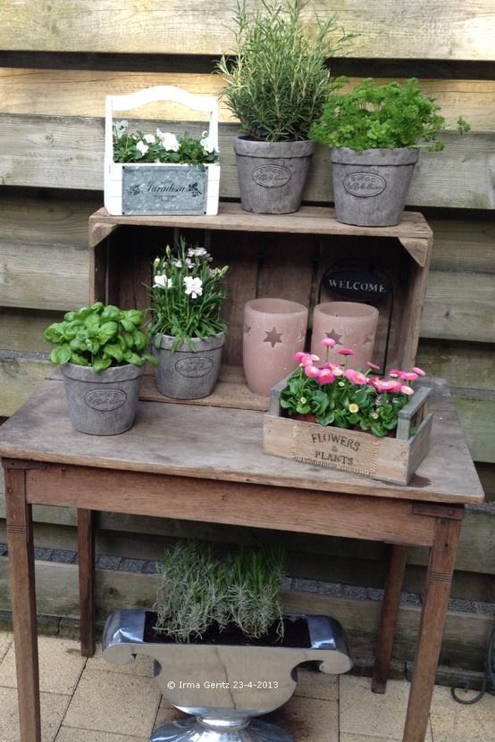 Oud tafeltje, veilingkist, potjes, kruiden en bloemen maken het gezellig op ons terras. Eigen foto. Pottong bench.