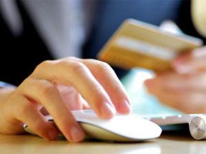 e commerce Investments Program: We Invest Economic and Technical Resources To Develop own e commerce business and the Online Business of oth...