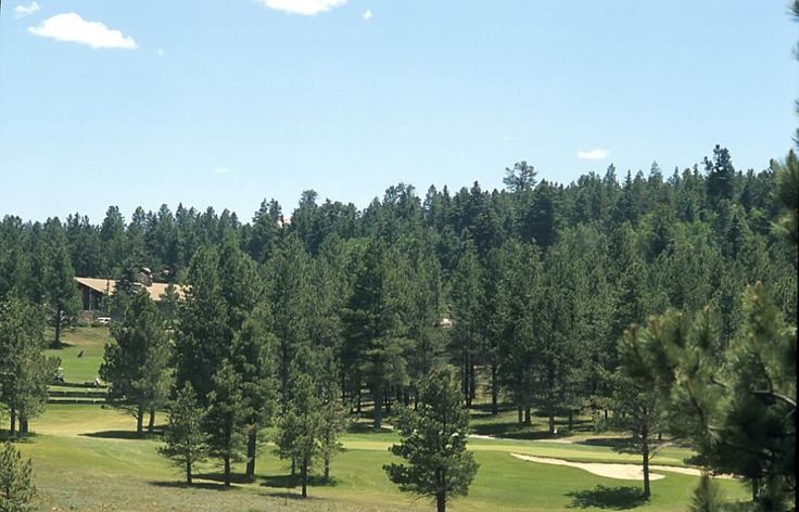 Different pics: nice!   25 Spyglass Hill Rd, Angel Fire, NM 87710 is For Sale - Zillow