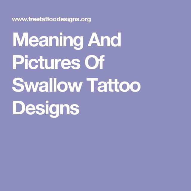 Best 25 Meaning Of Swallow Ideas On Pinterest Swallow