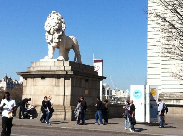 South Bank Lion!
