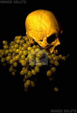 Mango Salute greeting card art: Skull and grapes - by Sue Skitt