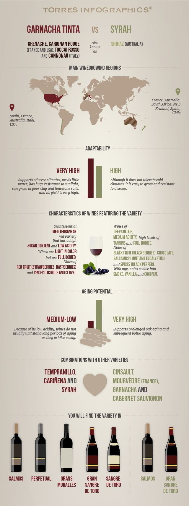 Garnacha Tinta vs. Syrah: Infographic by 'Club Torres' #wine101 #infographic