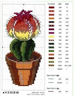 Cactus set of six - 2