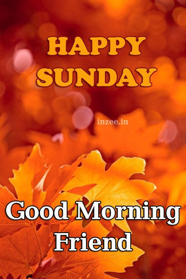 Happy Sunday, Good Morning Friend