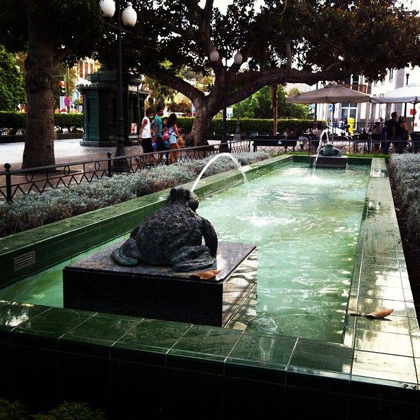 Plaza Las Ranas