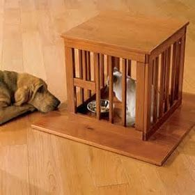 Some ideas for Dog-Proof Cat Feeding Station. Some are pretty fancy but others are nice too. Ideas, pictures