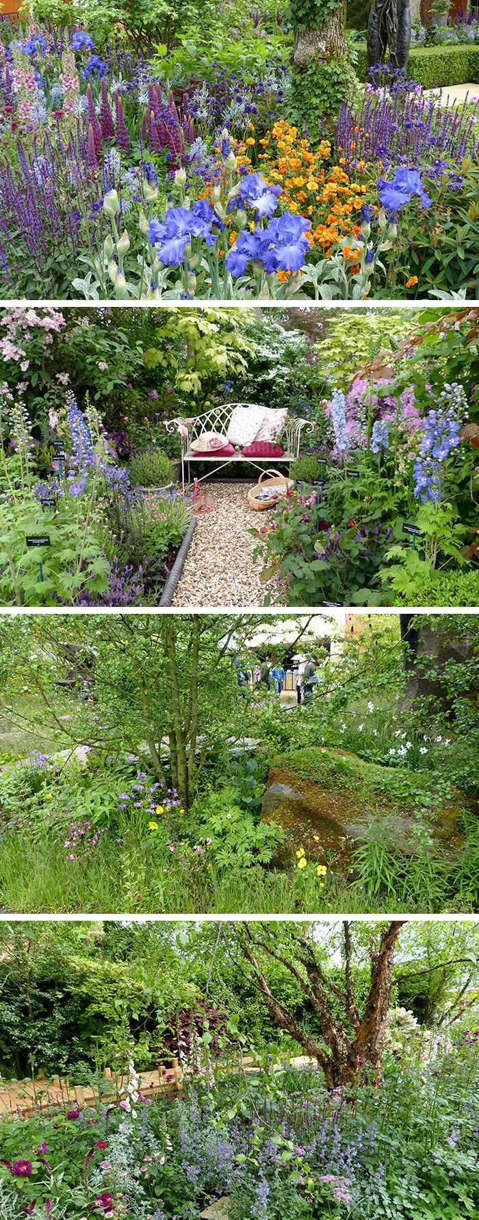 422 best images about Gardens - Chelsea Flower Show on Pinterest
