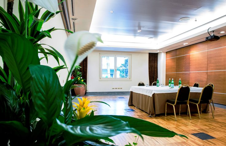 #Executive #Roundtables on Lake Como
