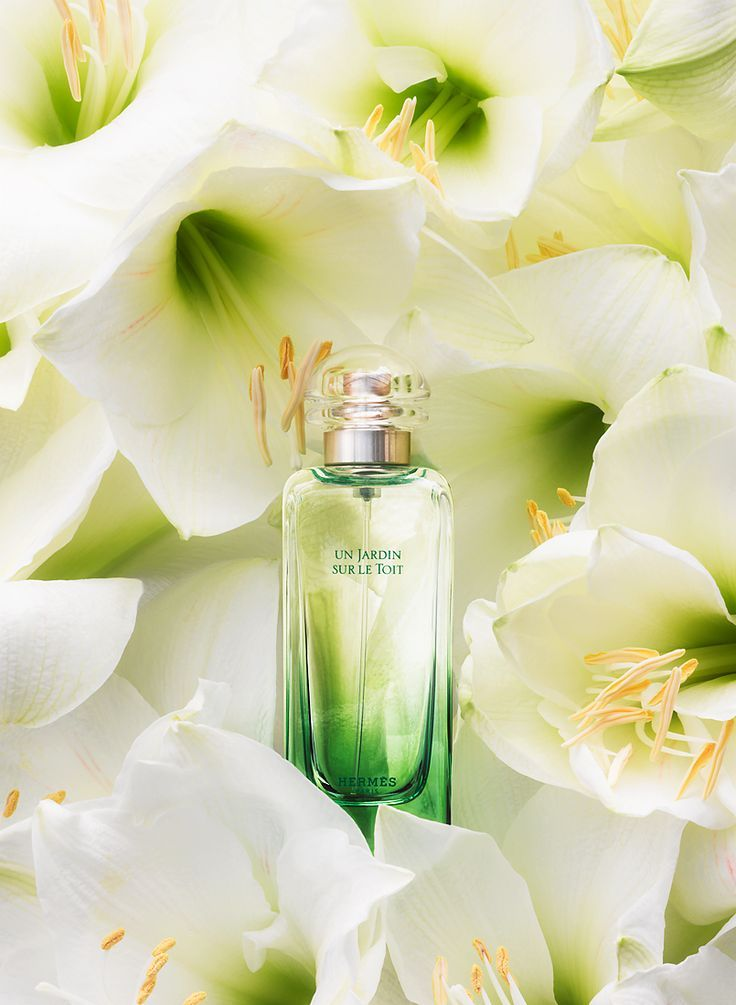 Mejores 378 im genes de parfum en pinterest perfume - Infudea alta gama ...