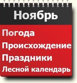 #Ноябрь - описание месяца года