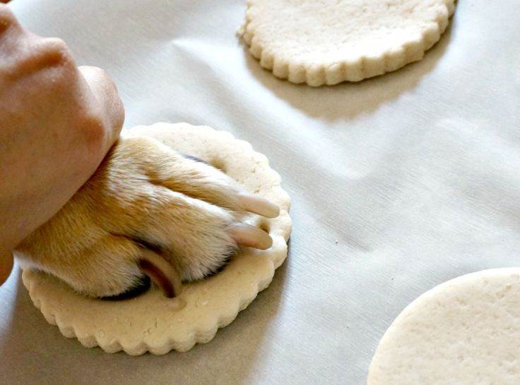 DIY Pup Paw Salt Dough Ornaments
