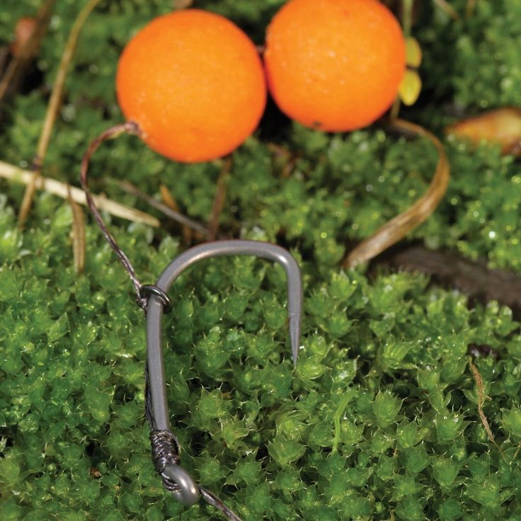 10 hookbait attachments you should know - Articles - CARPology Magazine
