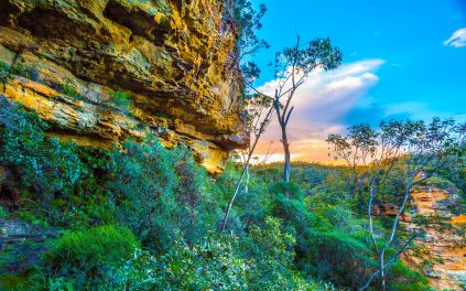HD Nature Wallpaper Desktop Background
