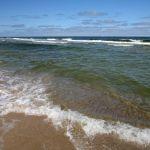 fale na plaży