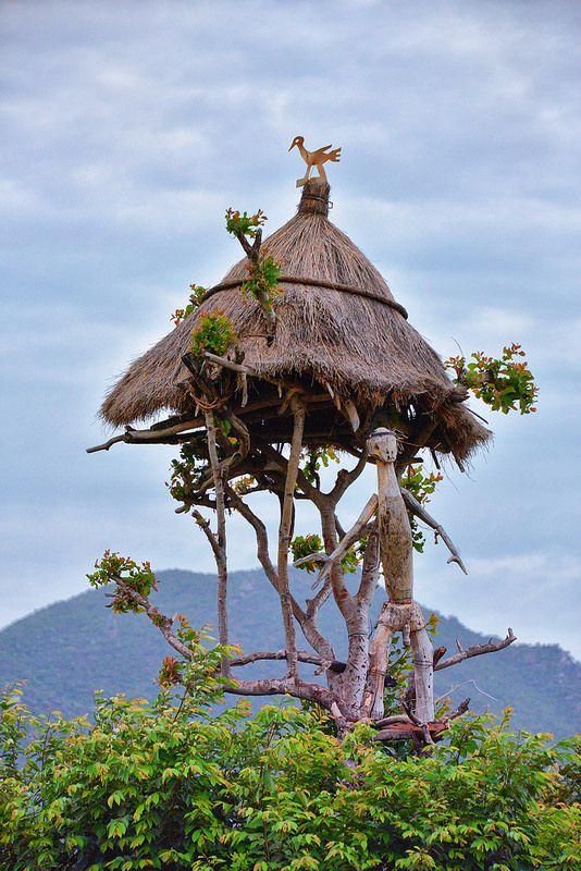 Hamer Tribe, Ethiopia Omo Valley